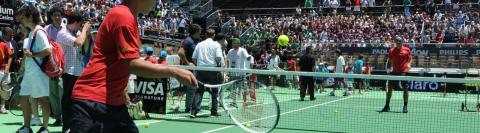 Wimbledon Tennistoernooi